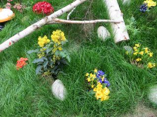 Wiese im Privatgarten