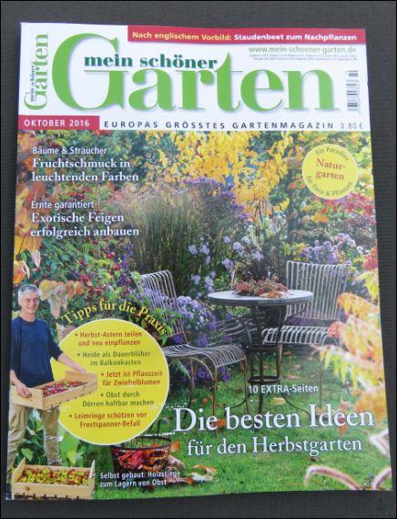 """Cover der Gartenzeitschrift """"Mein schöner Garten"""" Ausgabe Oktober 2016"""